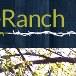 Ranch Website Example